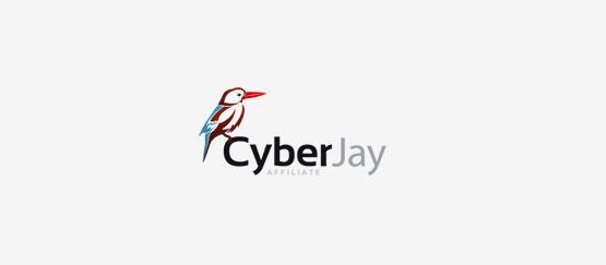 CyberJay